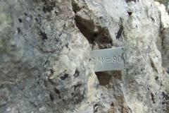 DSCF8343
